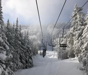 Chair lift surrounded by snow-covered trees